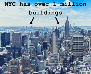 NYC requires new buildings to have green roofs
