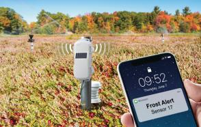 HOBOnet Field Monitoring System used for frost protection