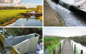 Going with the Flow – Simplified Web-based Water Level and Flow Monitoring