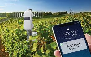 Use HOBOnet to Manage Frost Risk for your Crops