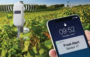 HOBOnet wireless sensor network used for frost protection