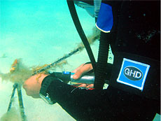 Figure 2 - GHD diver downloading temperature data using the waterproof HOBO shuttle at a nearshore site adjacent to the NDIA