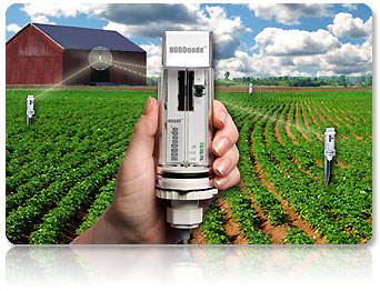 Wireless Temperature Amp Soil Moisture Sensors Hobonode